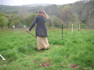 Trimming-under-electric-fence.JPG