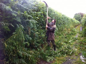 Trimming a hedge with a scythe - breaking the rules withe awareness!